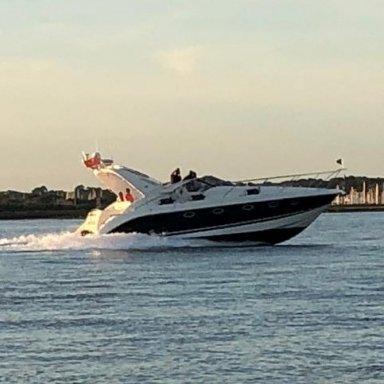 701017 X 1F (C) Seagull (R)IV